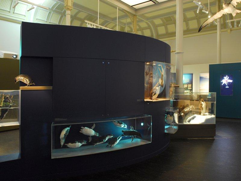 Surviving Australia Gallery