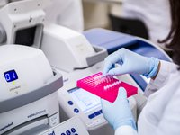 ACWG DNA Labs 2015