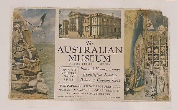 Australian Museum Poster, 1920's - AMS492/J180