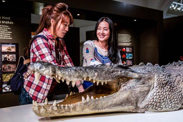 Surviving Australia Exhibition