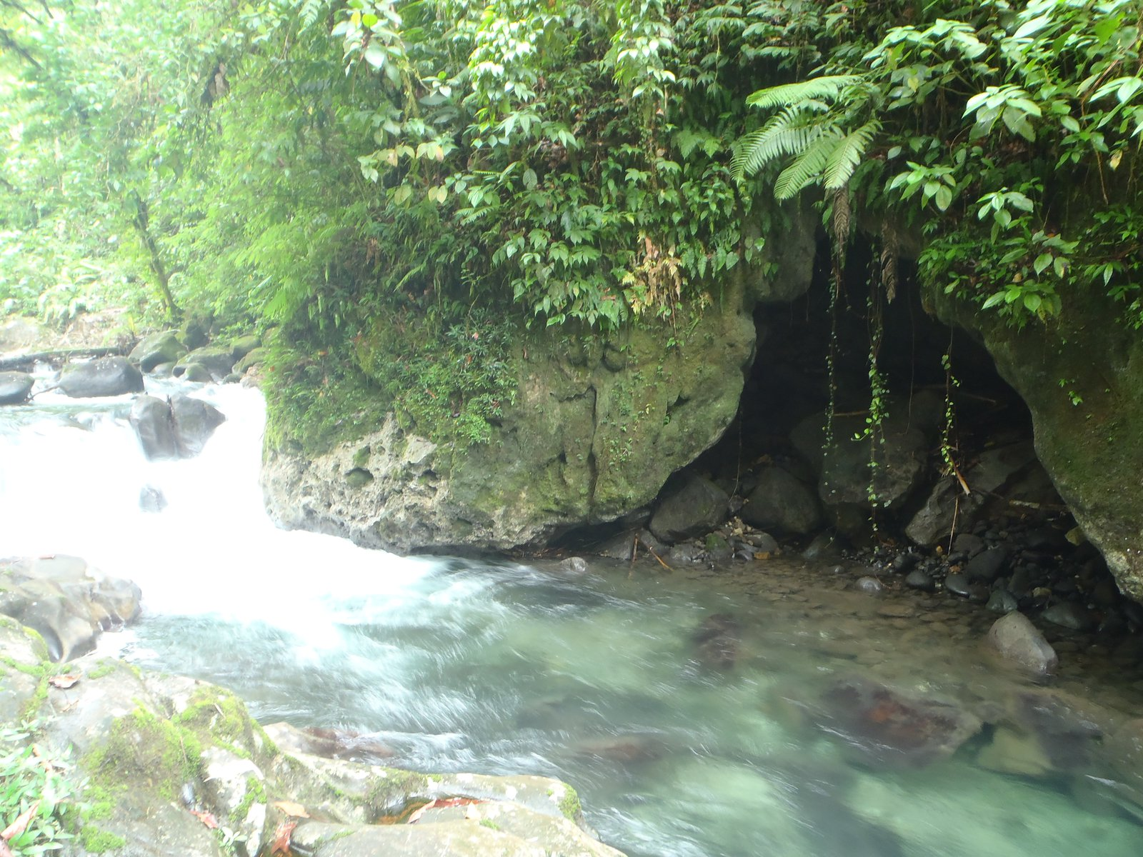 A flowing stream in Malaita.