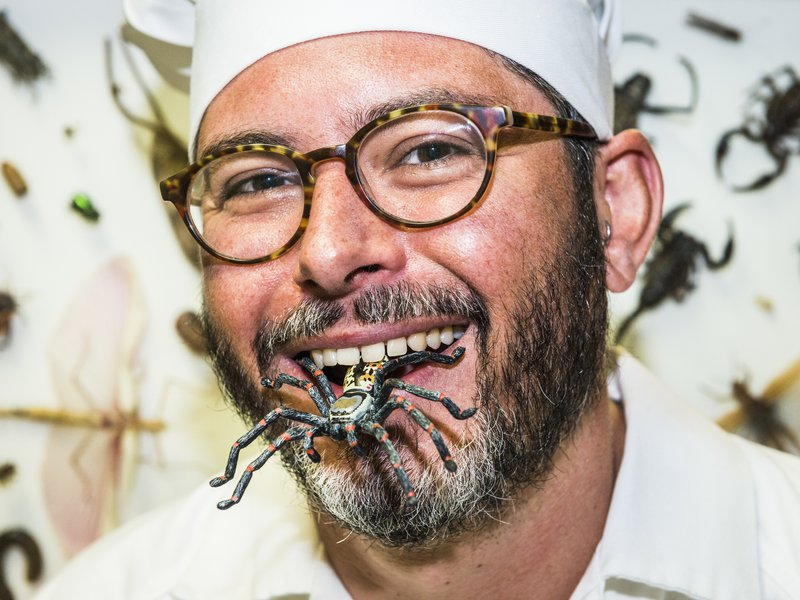 Bug Chef - CultureUpLate2017