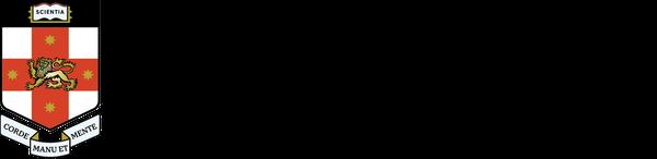 UNSW Centre for Ideas logo