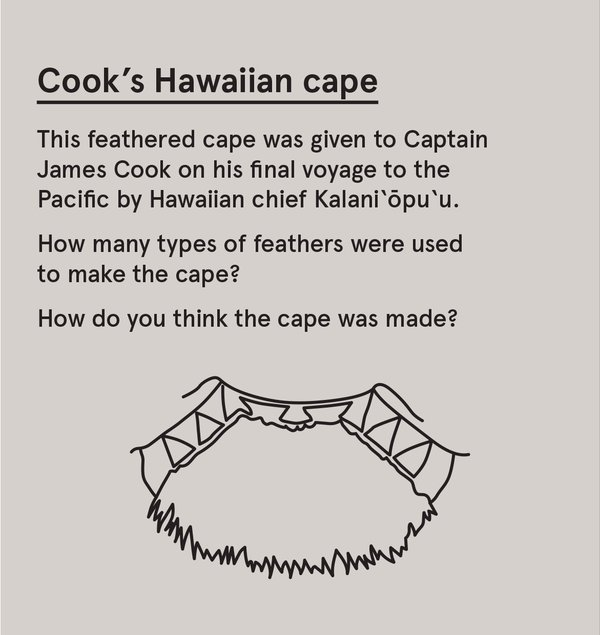 ED_200T_P - Cook's Hawaiian cape