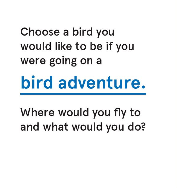CS_Bird - Card 1