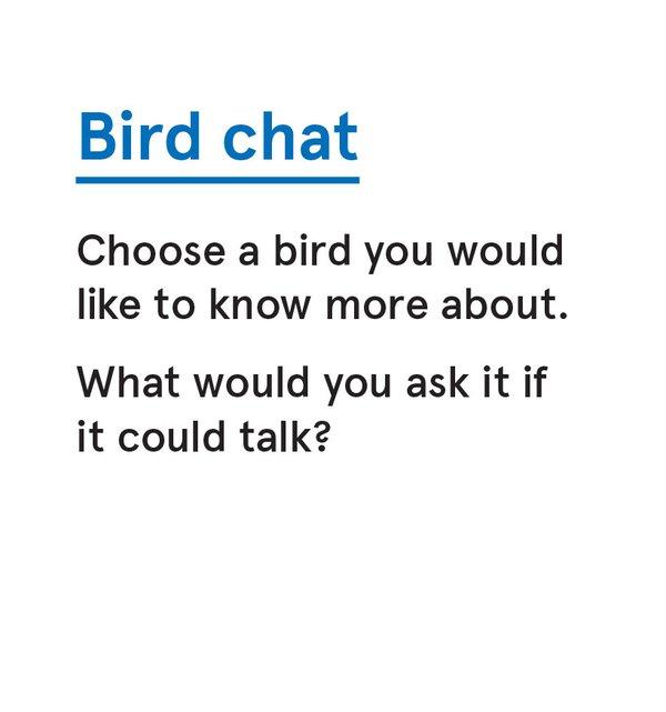CS_Bird - Card 11