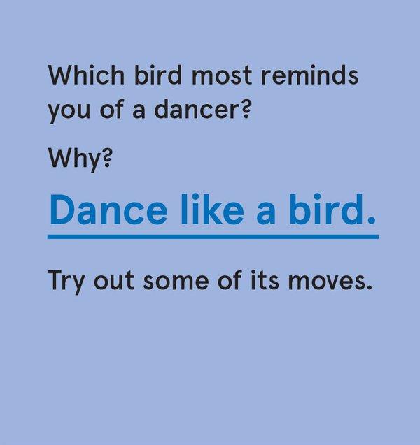 CS_Bird - Card 2