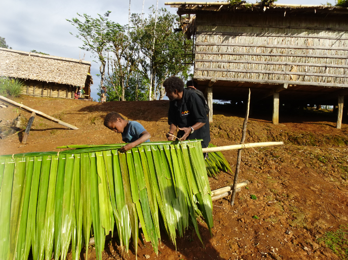 Chief Waneagea teaching his son how to mend the roof's of village huts.