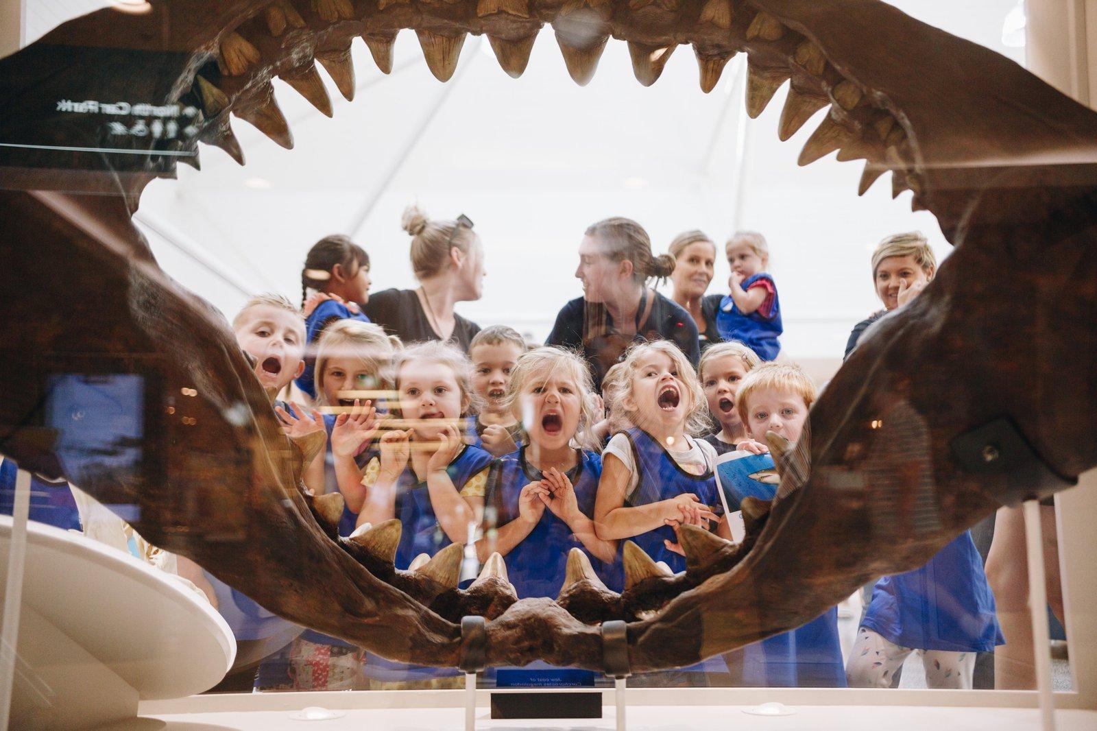 Children in Australian Museum Sharks exhibition
