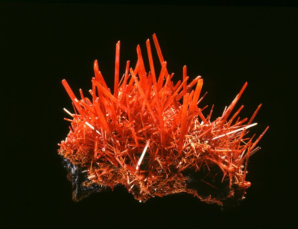 D.50681. Crocoite on limonite