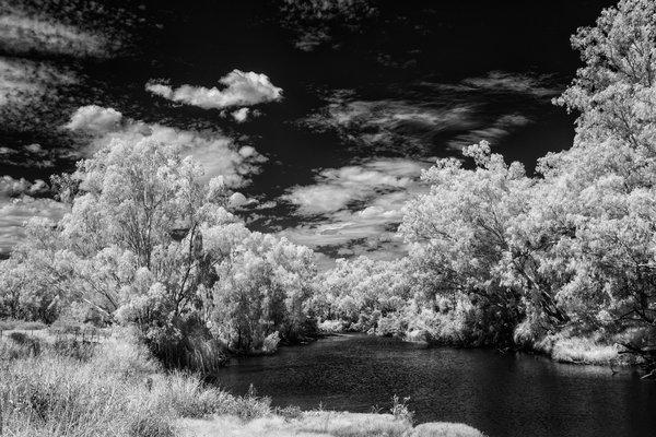 Dark Days - Brendan Beirne