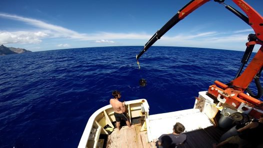 Deck crane bringing in a baited trap