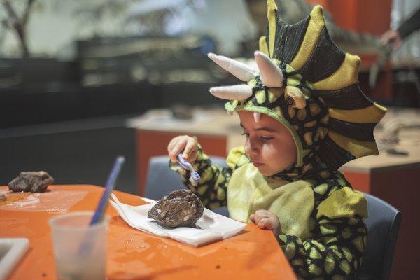 Dinosaur Festival 2018