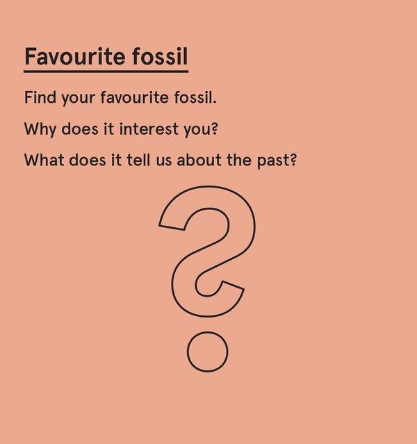 ED_Dino_S - Favourite dinosaur