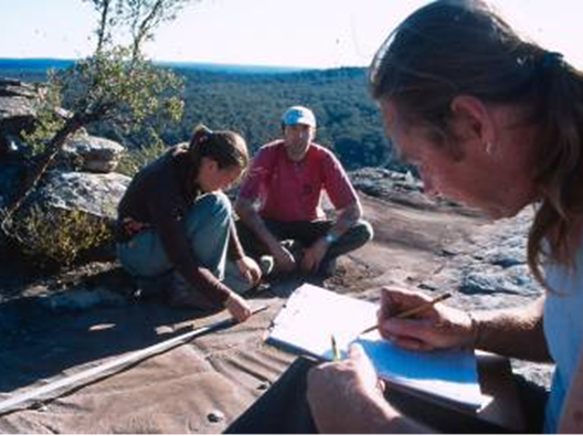 Jacky Ward, Evan Yanna Muru Gallard and Wayne Brennan recording one of the recently discovered grinding grooves and engraving sites on the Wollemi travel route, September 2004