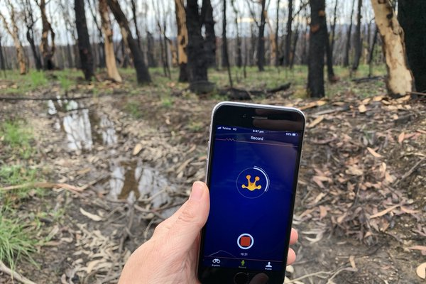 FrogID Fire Research_28 September 2020