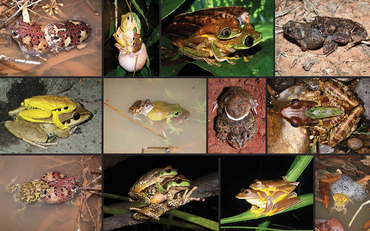 sextreff i frogn