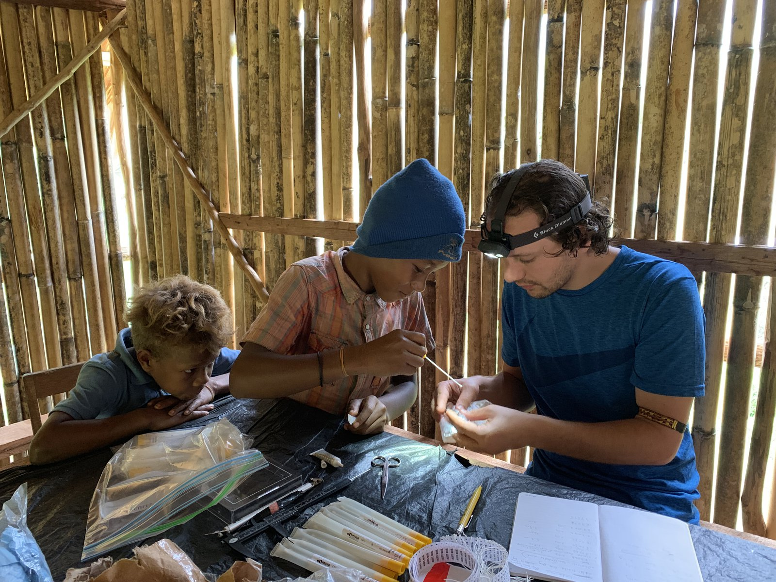Frog research in the Solomon Islands
