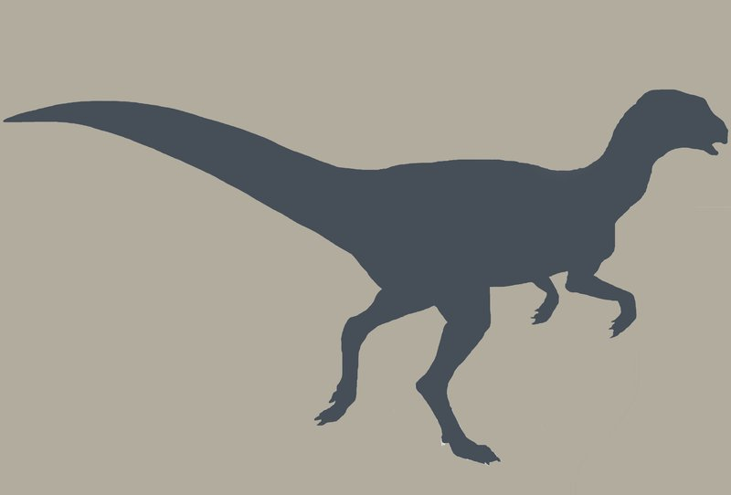 Fulgurotherium silhouette