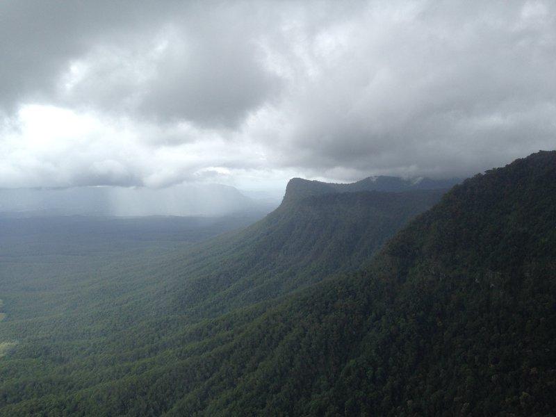 Image of rainforests in Northeast NSW. Photographer: Chris Reid