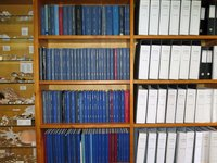 Lizard Island library shelves