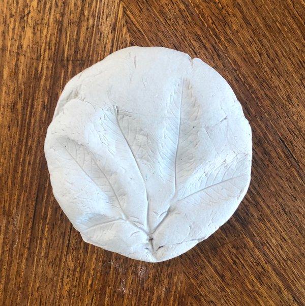 Impression fossil activity – Craft leaf fossil