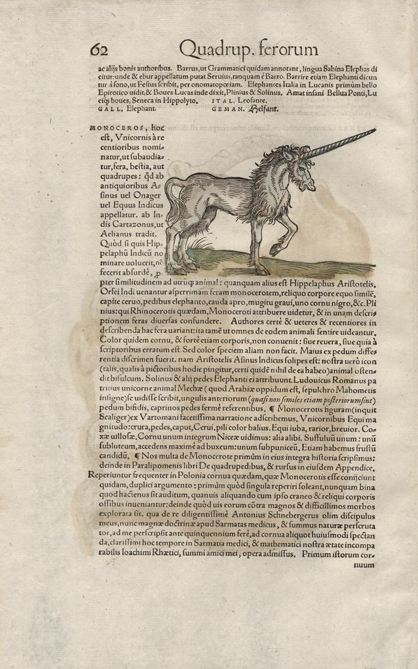 Icones animalium quadrupedum viviparorum et oviparorum : quae in