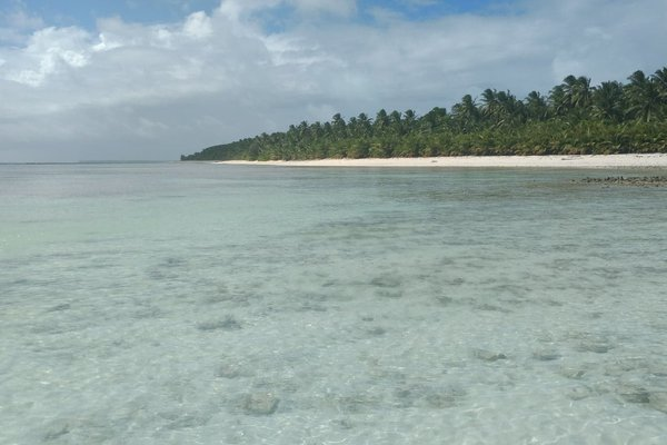 Shallow intertidal reef at the Cocos (Keeling) Islands.
