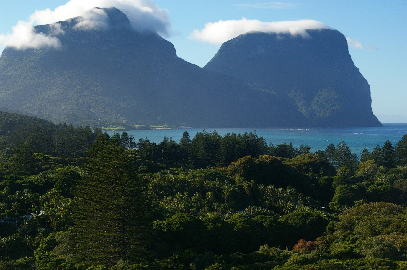 Mount Gower (875 m) at the southern end of Lord Howe Island, where the Woodhen made its last stand