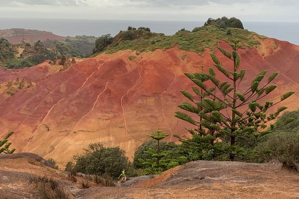 Image of Phillip Island, its red soil exposed to erosion.