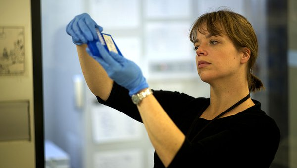 Dr Jodi Rowley in DNA lab
