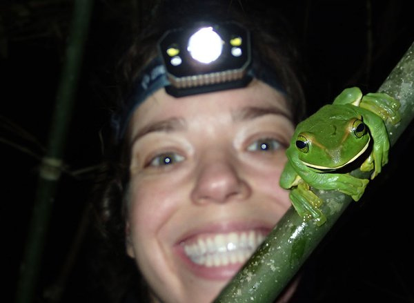 Dr Jodi Rowley and Feae's Frog