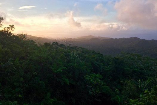 View from Kwainaa'isi, Solomon Islands