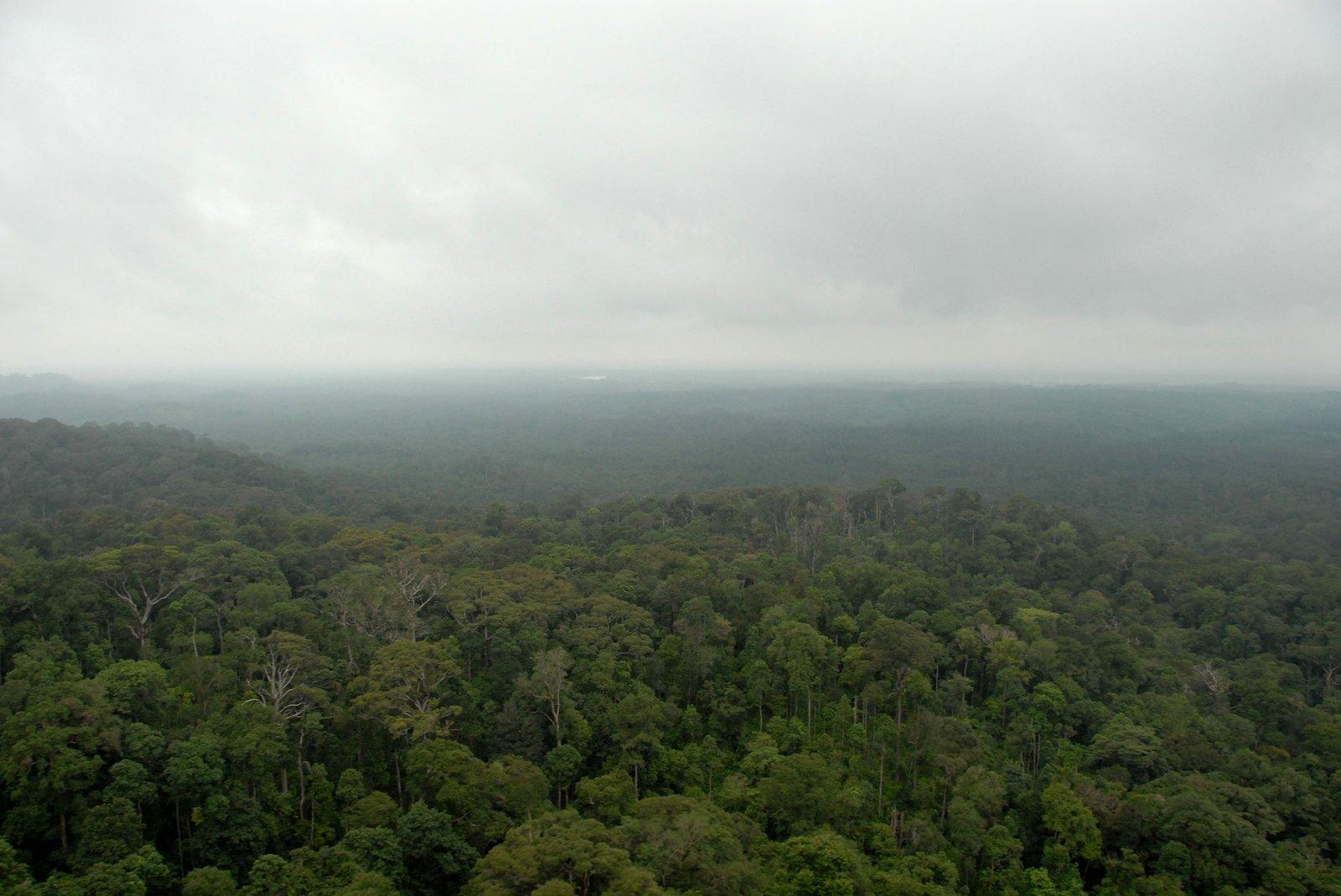 Virachey National Park, Cambodia