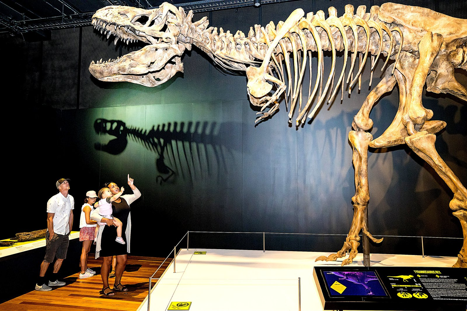 Tyrannosaurs Meet the Family exhibition