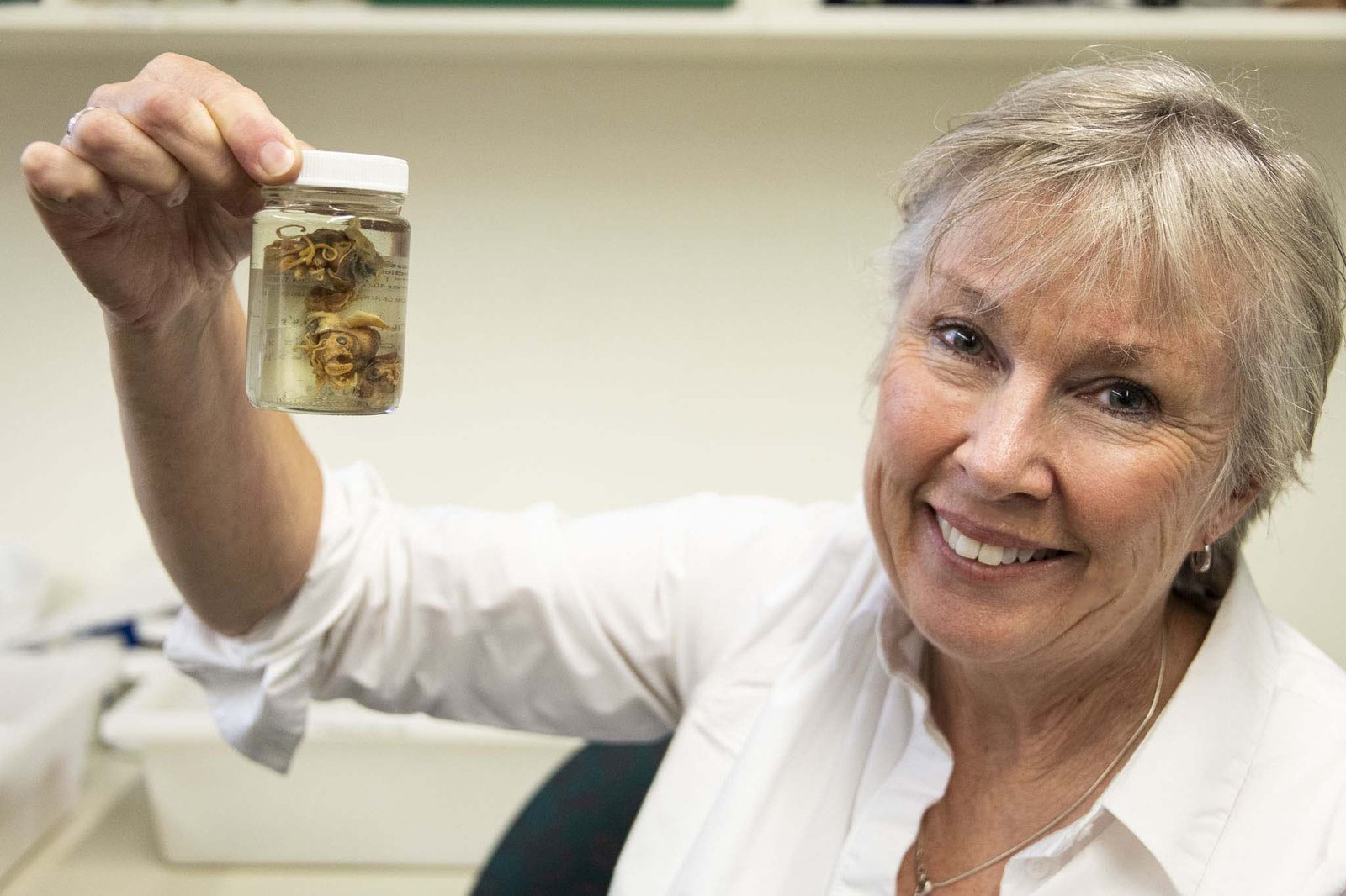 Dr Mandy Reid with I. merlini type specimens.