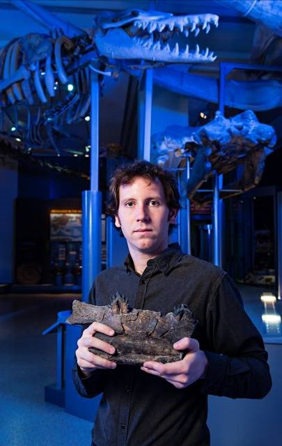 Dr Matthew McCurry with a piece of a jaw from one of one of the fossil whales used in the study.