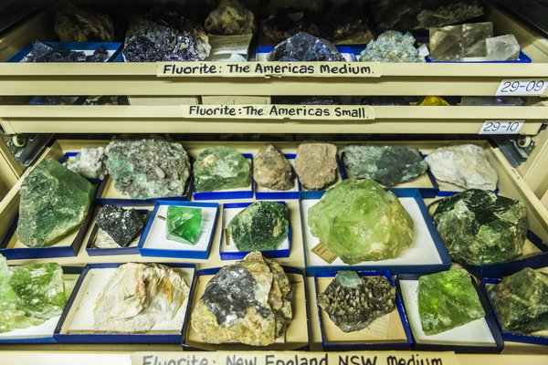 Mineralogy & Petrology Collection Area 2018