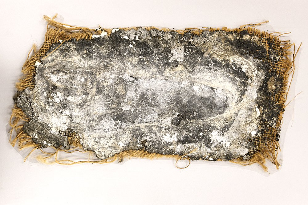 Mungo footprint