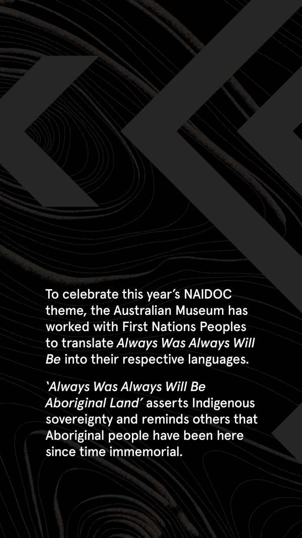 Celebration fo NAIDOC theme introduction text