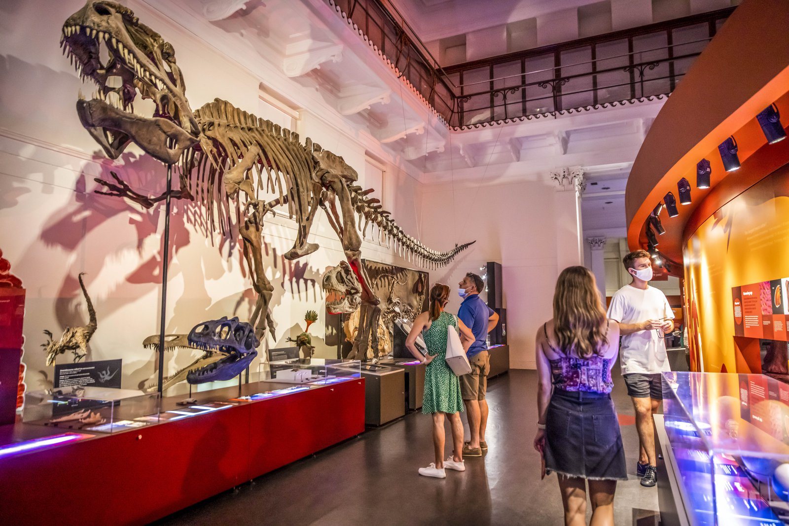 Visitors in the Dinosaur Exhibition during Nights at the Museum