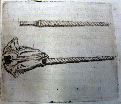 Page 103 of De Unicornu (1645)