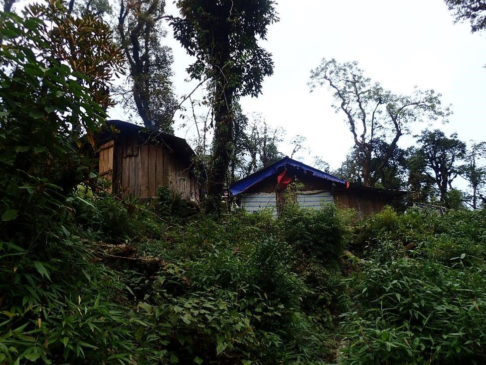 A tourist camp built without official permission at the type locality of the new species.