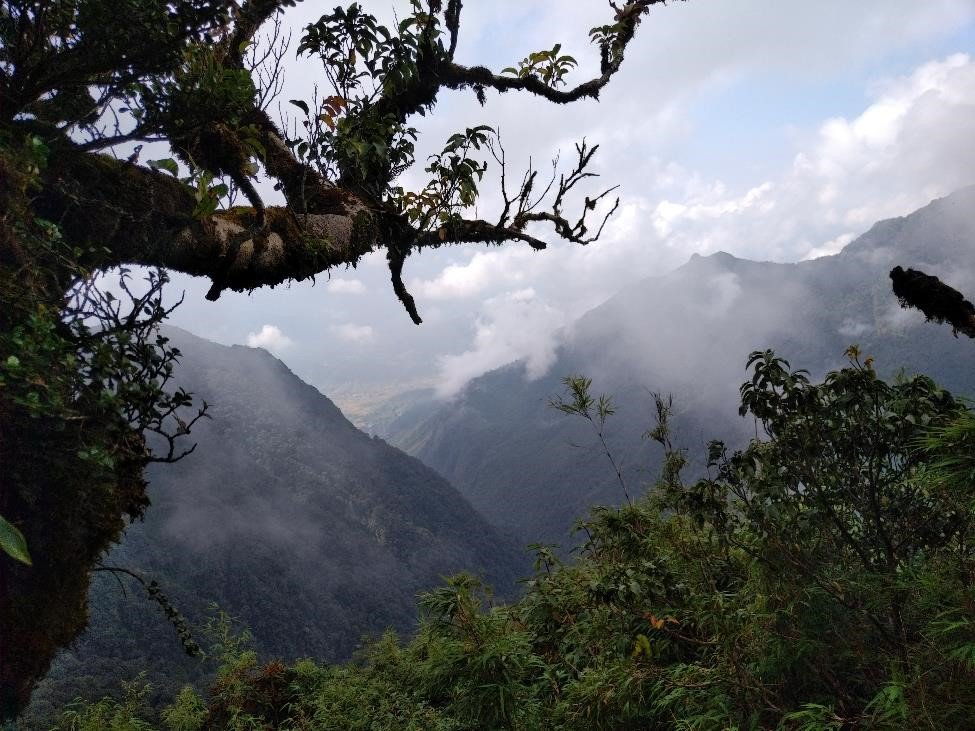 A view of Mount Pu Ta Leng from 2300 m elevation.