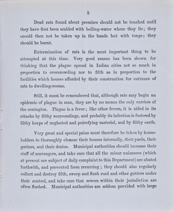 Prevention of Plague. Instructions to Householders - Page 5