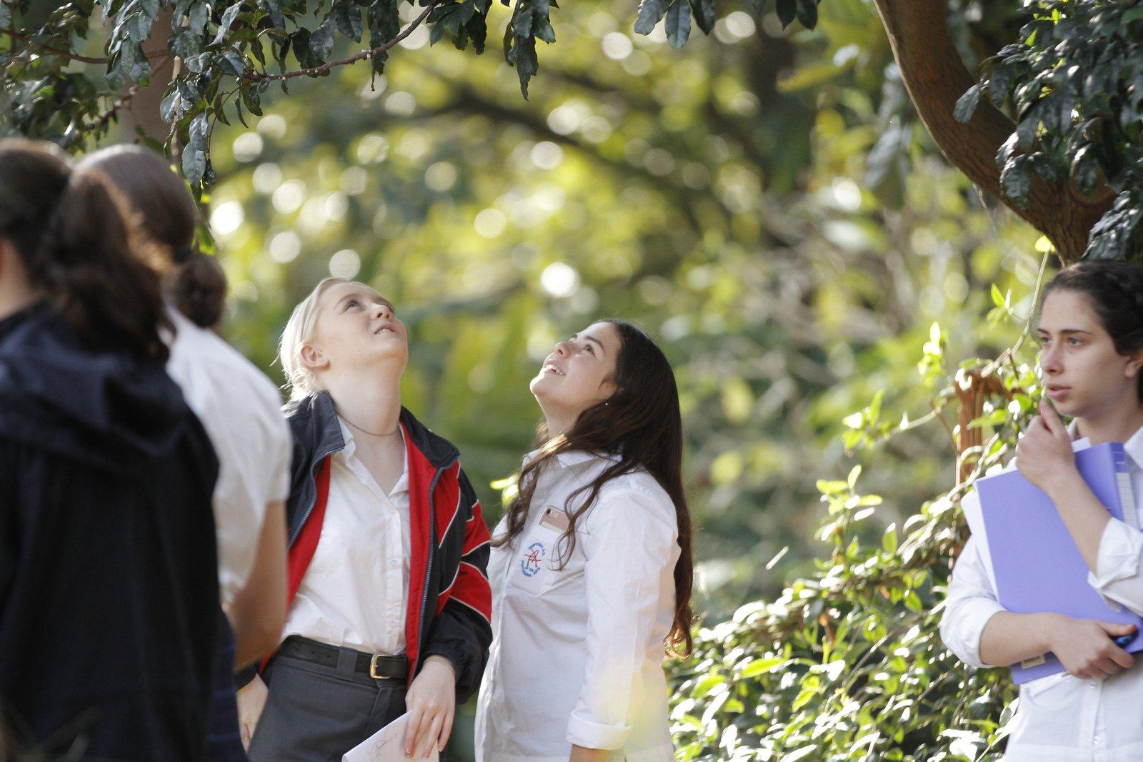 Royal Botanic Garden Sydney CBD Biological Diversity
