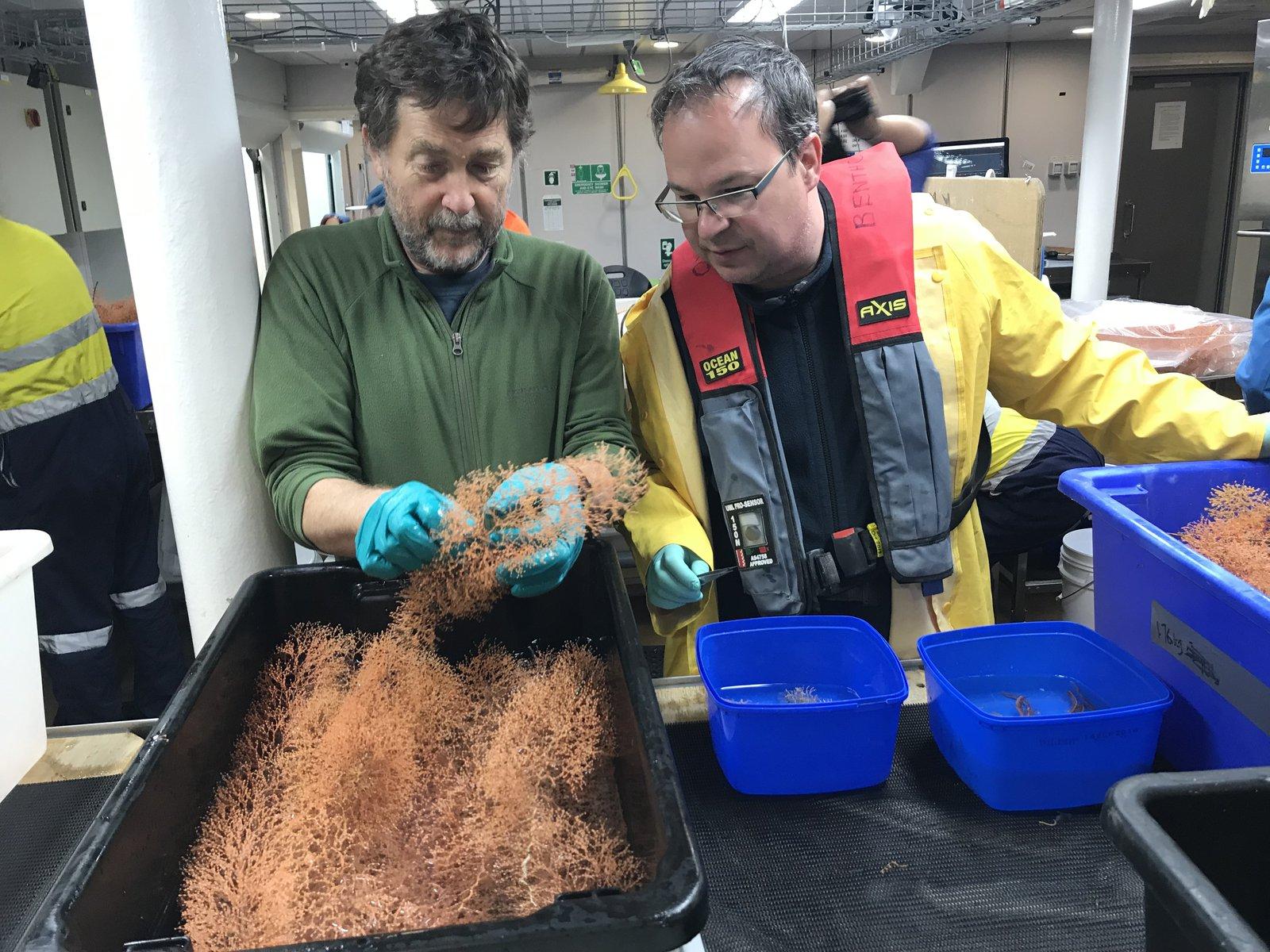 RV Investigator Expedition - November 2018