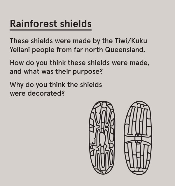 ED_200T_S - Rainforest shields