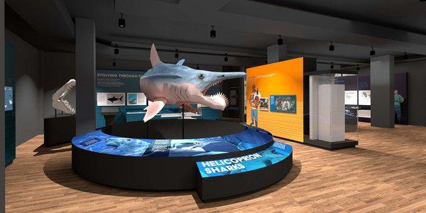 SHARKS Render 02