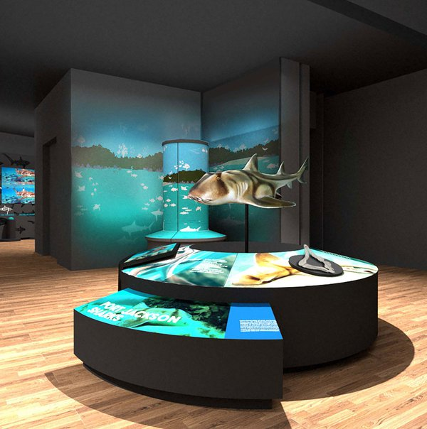 Touring Exhibition: Sharks render 18